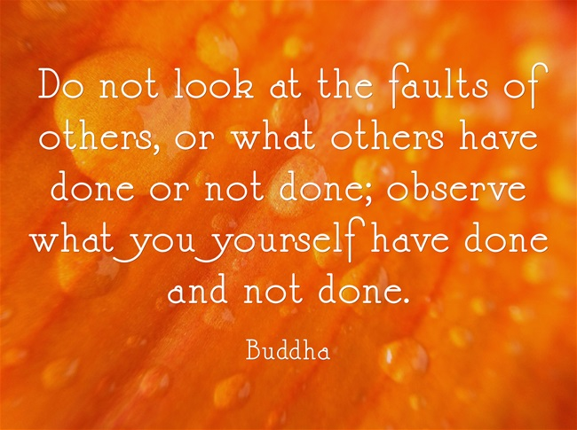 Do not look at the faults of others, or what others have done or not done; observe what you yourself have done and not done. —Buddha